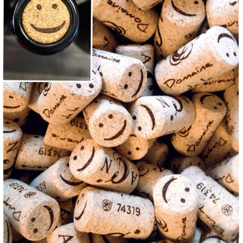 La ducquerie bouchons smiles